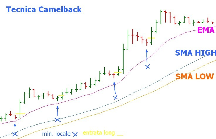 scalping-camelback